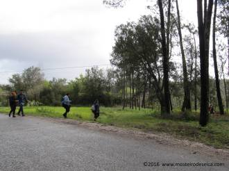 Rota_de_Seica_Finalistas_EB1_Borda_do_Campo_10042016_23